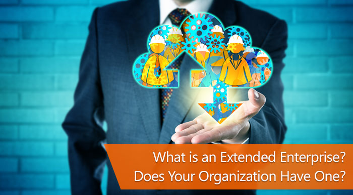 What is an Extended Enterprise